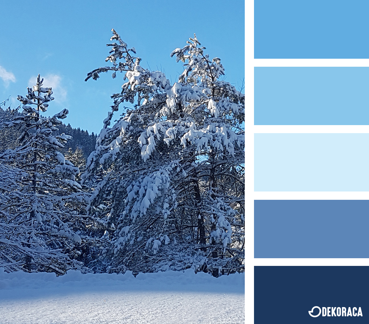 Barvna paleta tedna: Januarski blues